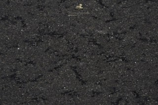 new-spice-black